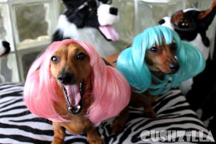 My Dogs Totally looks like every girl at every rave ever.