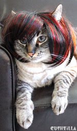 Cat Wig / Dog Wig : Cushzilla SHAAARON! Brunette Bowl Cut Wig