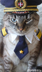 Pilot Shirt for Cats And Dogs - SMALL Captain Kitty / Dog from Cushzilla