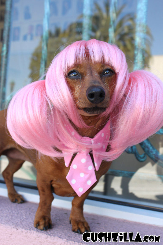 Dog Wig Cat Wig Cushzilla Pink Anime Pet Wig
