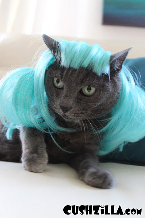 Aqua Blue Pet Wigs For Cats Dogs