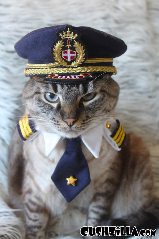 Small Pilot Shirt for Cats u0026 Dogs & Cushzilla Captain Kitty Pilot Uniform for Cats and Dogs - SMALL