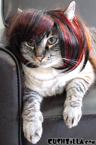 cat wig dog wig cushzilla shaaaron brunette bowl cut wig. Black Bedroom Furniture Sets. Home Design Ideas