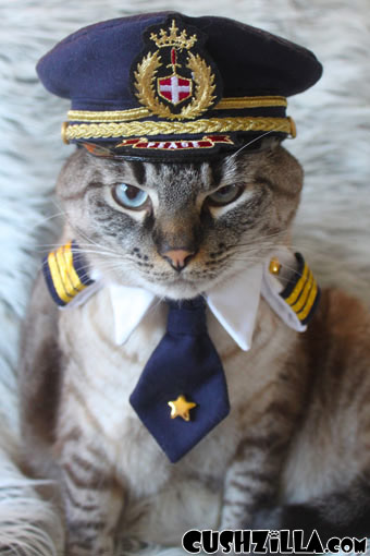 Small Pilot Shirt for Cats & Dogs
