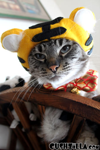 Tiger Costume for Cats & Dogs from Cushzilla