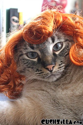 Cat Wig / Dog Wig: Cushzilla Curly Red Wig for Cats & Dogs