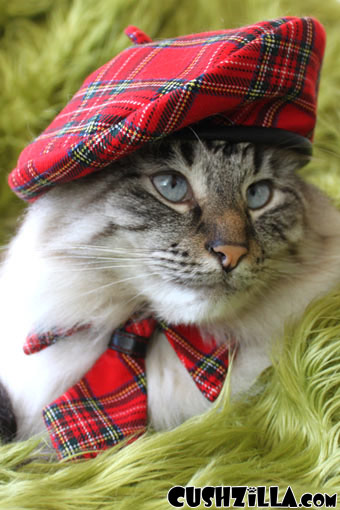 Cat Hat / Dog Hat - Red Plaid Chatte Beret from Cushzilla (HAT ONLY!)