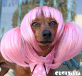 Dog Wig / Cat Wig: Cushzilla Pink Anime Pet Wig