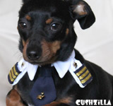Pilot Shirt for Cats & Dogs - X-SMALL Captain Kitty / Dog from Cushzilla