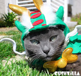 Dragon Costume for Cats & Dogs from Cushzilla
