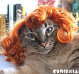Curly Red Dog Wig / Red Cat Wig