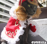 Prince Costume for Cat or Dog - CAPE ONLY